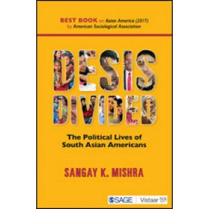 Desis Divided - Hardcover , English